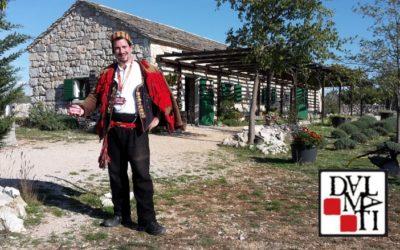 Etnoland Dalmati – Croatian tradition, Groupy innovation